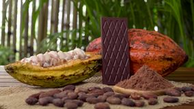Φραγμός πικρής σοκολάτας, ακατέργαστα φρούτα κακάου, φασόλια κακάου, σκόνη κακάου στον ξύλινο πίνακα απόθεμα βίντεο