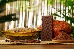 Φραγμός σοκολάτας γάλακτος, ακατέργαστα φρούτα κακάου, φασόλια κακάου, βούτυρο κακάου στον ξύλινο πίνακα Στοκ φωτογραφία με δικαίωμα ελεύθερης χρήσης