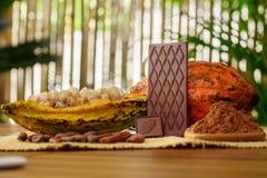 Φραγμός σοκολάτας γάλακτος, ακατέργαστα φρούτα κακάου, φασόλια κακάου, βούτυρο κακάου στον ξύλινο πίνακα Στοκ εικόνα με δικαίωμα ελεύθερης χρήσης