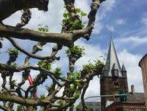 Φρανκφούρτη Αμ Μάιν Στοκ εικόνες με δικαίωμα ελεύθερης χρήσης
