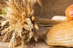 Φραντζόλα του άσπρων ψωμιού και των κουλουριών σίτου με τα σιτάρια ενός σίτου και το σίτο στοκ εικόνες