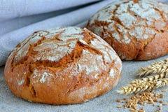 Φραντζόλα του ψωμιού σίκαλης Στοκ Φωτογραφία