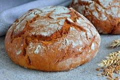 Φραντζόλα του ψωμιού σίκαλης Στοκ Εικόνες