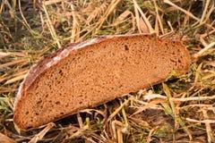 φραντζόλα ψωμιού Στοκ εικόνες με δικαίωμα ελεύθερης χρήσης