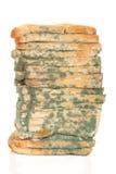 φραντζόλα ψωμιού moldy στοκ εικόνες με δικαίωμα ελεύθερης χρήσης