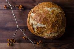 Φραντζόλα χωριάτικου ολόκληρου του ψωμιού σίτου με τον κλάδο της Hazel μαγισσών Στοκ Εικόνα