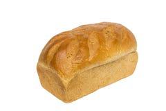Φραντζόλα ψωμιού σίτου μελιού Στοκ Εικόνα