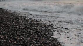Φρενάρισμα θάλασσας ενάντια στις πέτρες και τα χαλίκια σε μια παραλία, κύματα του καθαρού νερού απόθεμα βίντεο