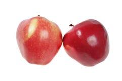 φρεσκάδα δύο μήλων στοκ φωτογραφίες με δικαίωμα ελεύθερης χρήσης