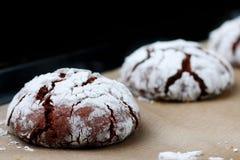 Φρεσκάδα ρωγμών σοκολάτας μπισκότων νόστιμη έννοια επιδορπίων μπισκότα για τα Χριστούγεννα holidayand στοκ φωτογραφία με δικαίωμα ελεύθερης χρήσης