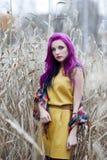 Φρικτό κορίτσι με την ιώδη τρίχα Στοκ εικόνες με δικαίωμα ελεύθερης χρήσης