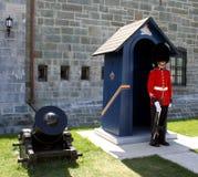 φρουρά βασίλισσα s Στοκ Εικόνα