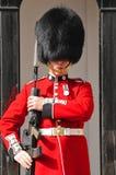 φρουρά βασίλισσα s Στοκ φωτογραφία με δικαίωμα ελεύθερης χρήσης