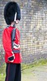 φρουρά βασιλική Στοκ Φωτογραφίες