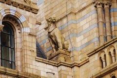 Φρουρά μουσείων Στοκ εικόνα με δικαίωμα ελεύθερης χρήσης