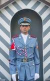 Φρουρά στο Κάστρο της Πράγας που στέκεται στην προσοχή Στοκ φωτογραφίες με δικαίωμα ελεύθερης χρήσης