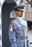 Φρουρά της Πράγας Στοκ εικόνες με δικαίωμα ελεύθερης χρήσης