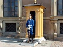 φρουρά Στοκ Φωτογραφίες