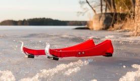 Φρουρές σαλαχιών στον πάγο άνοιξη Στοκ Εικόνα