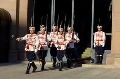 Φρουρές της τιμής Στοκ Εικόνα