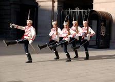 Φρουρές της τιμής στοκ φωτογραφία με δικαίωμα ελεύθερης χρήσης