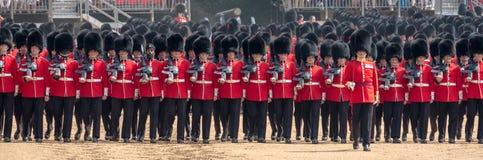 Φρουρές Coldstream στη συγκέντρωση το χρώμα, στρατιωτική τελετή στην παρέλαση φρουρών αλόγων, Λονδίνο, UK στοκ φωτογραφία