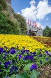 Φρούριο και κίτρινο λουλούδι στην ημέρα ουρανού θαμπάδων στοκ εικόνες
