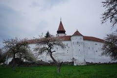 φρούριο Στοκ Εικόνα