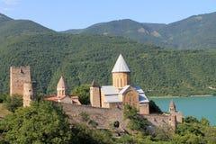 Φρούριο Ananuri στη Γεωργία Στοκ εικόνα με δικαίωμα ελεύθερης χρήσης