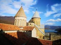 Φρούριο Ananuri στοκ φωτογραφία με δικαίωμα ελεύθερης χρήσης