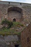 Φρούριο Ivangorod Στοκ εικόνες με δικαίωμα ελεύθερης χρήσης