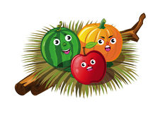 φρούταα Στοκ Φωτογραφίες
