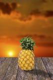 Φρούτα ανανά με τον ουρανό ηλιοβασιλέματος Στοκ εικόνα με δικαίωμα ελεύθερης χρήσης