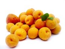 Φρούτα βερίκοκων Στοκ φωτογραφία με δικαίωμα ελεύθερης χρήσης