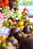 Φρούτα βολφραμίου στοκ εικόνα