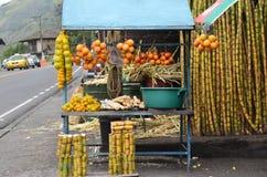 Φρούτα για την πώληση και ζαχαροκάλαμο στον Ισημερινό Στοκ Εικόνες