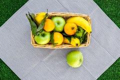 Φρούτα για το πικ-νίκ Apple, μπανάνα, tangerine στο τραπεζομάντιλο στην πράσινη τοπ άποψη υποβάθρου χλόης Στοκ εικόνες με δικαίωμα ελεύθερης χρήσης