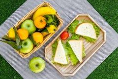 Φρούτα για το πικ-νίκ Apple, μπανάνα, tangerine στο τραπεζομάντιλο στην πράσινη τοπ άποψη υποβάθρου χλόης Στοκ φωτογραφία με δικαίωμα ελεύθερης χρήσης