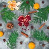Φρούτα γρανατών, μανταρίνι κανέλα, γλυκάνισο και χειμερινό δέντρο στο σκοτεινό υπόβαθρο Έννοια Χριστουγέννων Επίπεδος βάλτε Τοπ ό Στοκ Φωτογραφίες