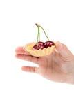 Φρούτα γλυκών κερασιών στο θηλυκό χέρι Στοκ εικόνα με δικαίωμα ελεύθερης χρήσης