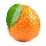 Φρούτα γλυκών πορτοκαλιών Στοκ φωτογραφία με δικαίωμα ελεύθερης χρήσης