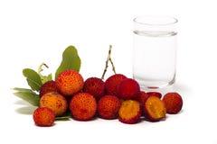 Φρούτα δέντρων φραουλών (Arbutus Unedo) με το aguardiente Στοκ φωτογραφία με δικαίωμα ελεύθερης χρήσης