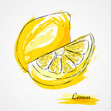 Φρούτα λεμονιών στοκ εικόνες