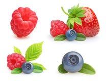 Φρούτα θερινών μούρων Στοκ Φωτογραφίες