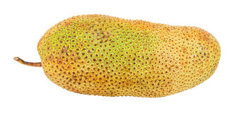 Φρούτα ΙΙ Cempedak Στοκ Εικόνα