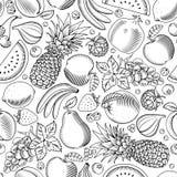 Φρούτα και άνευ ραφής σχέδιο μούρων Στοκ Εικόνες