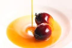 Φρούτα και λάδι μαγειρέματος ελαιοφοινίκων στοκ φωτογραφίες