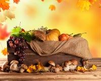 Φρούτα και λαχανικά πτώσης στο ξύλο thanksgiving Στοκ εικόνες με δικαίωμα ελεύθερης χρήσης
