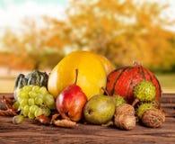 Φρούτα και λαχανικά πτώσης στο ξύλο thanksgiving Στοκ Φωτογραφία