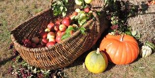 Φρούτα και λαχανικά φθινοπώρου, Λιθουανία Στοκ φωτογραφία με δικαίωμα ελεύθερης χρήσης